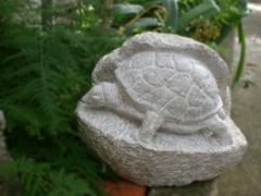 Artwork: Turtle (2)