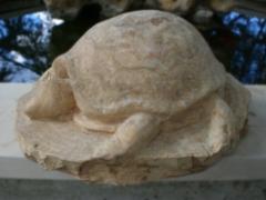 Artwork: Turtle (5)